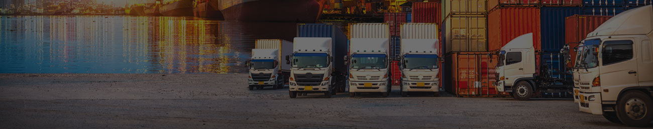 Travel Ports Shipping and Courier Services banner