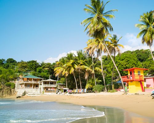 TTAL opens applications for tourism sector relief grants