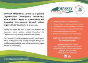 Odyssey Consultinc