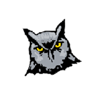DriveWise Logo